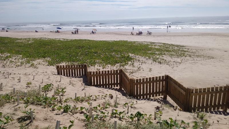 Plantio Nossa Praia 2_menor